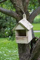 A wooden nesting box is hung from an old apple tree.