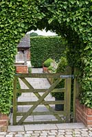 An arch and gate cut into a hornbeam hedge, framing the view of a front cottage garden.