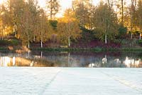 The Birkett Long Millennium Walk of white stemmed birches and red stemmed cornus reflect in the water of the Upper Pond