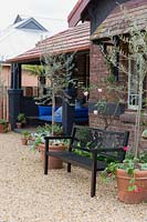 A black painted bespoke metal garden bench featuring a back with stylised fruits and foliage flanked by two potted olive trees, in front verandah of a brick cottage with a metal framed lounge with blue cushions featuring a collection of different styles of terracota pots planted with a variety of succulents and a red flowered Pelargonium, sitting on a pebble mulch.