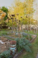 Two vegetable gardens with timber sleeper edges, feature a rusty metal drum with decorative holes cut in it and a giant thistle, Cynara cardunculus, also known as the Cardoon, with dry fluffy seed heads.