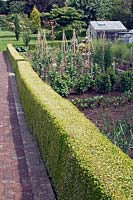 The formal vegetable and fruit garden bordered by buxus hedging
