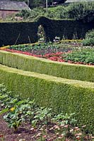 Formal vegetable garden bordered by buxus and fagus hedging