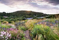 View over prairie-style planting, plants include: Stipa calamagrostis, Phlox, low growing Persicaria amplexicaulis 'Pink Elephant', Sanguisorba hakusanensis 'Lilac Squirrel' and blue Eryngium bourgatii 'Picos Blue'
