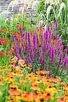 Pink lythrum with orange heleniums at York Gate Garden, Adel in July.