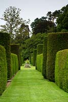 Grass pathway between tall formal Taxus - Yew hedge topiary, stone font ornament focal point and trees beyond
