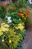 Small bed between brick wall and brick path. Planting includes: Phlox 'David', Achillea 'Moonshine', Stipa arundinacea, Helenium 'Moerheim Beauty' and Alchemilla mollis