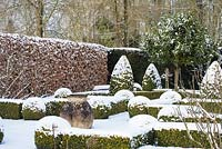 The Potager with Buxus - box hedging and topiary shapes, Fagus - Beech hedge and Taxus baccata - yew hedge. Large Laurus nobilis - standard Bay tree and terracotta oil jar with a covering of snow. The Old Rectory, Suffolk, UK