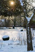 View across snow covered garden, with Buxus - box balls, towards the village church in the late afternoon in late February. The Old Rectory, Suffolk, UK