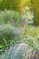 Herbaceous borders at Bluebell Cottage Gardens, Dutton, Cheshire. Planting includes Agastache, Lychnis coronaria and Verbena bonariensis.