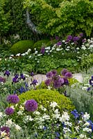 Iris, Alliums, Buxus sempervirens and Protea planting. The Time In Between by Husqvarna and Gardena - RHS Chelsea Flower Show 2015. Sponsor: Husqvarna and Gardena