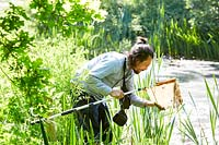 Man checking net after pond dipping.