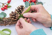 Woman fixing ribbon to wicker wreath with rosehips, pine cones and Eucalyptus foliage.