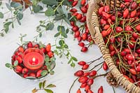 Rosa - Rosehips - and Eucalyptus foliage, alongside table decoration with red candle