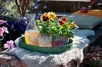 Tray with pansies in a pot, carafe and glasses of apple juice.