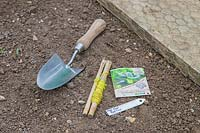 Tools and seeds ready for sowing Pak Choi in prepared seedbed