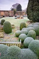 Frosty clipped Box balls and bench at Littlethorpe Manor, Yorkshire in February. Designed by Eddie Harland.