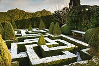A knot garden dusted with snow and punctuated by variegated Buxus - Box - pyramids, all enclosed in formal hedge with Hedera - Ivy - arbour with stone bench
