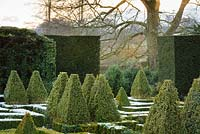 View over variegated Buxus - Box - pyramids arising from knot garden, towards gap in formal hedge with countryside views beyond