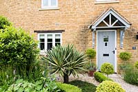 Contemporary cottage front garden with clipped standard Ilex crenata, standard bay and Yucca gloriosa 'Variegata'