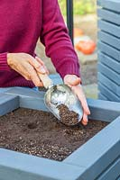 Woman using a scoop to cover newly-sown seeds with mix of compost and vermiculite