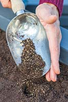 Using a scoop to cover newly-sown seeds with a mix of compost and vermiculite