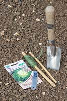 Handtrowel, string, seeds and label ready for sowing Endive in prepared seedbed
