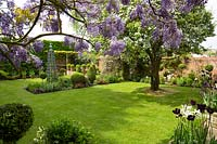 View through Wisteria to a neat lawn with beds of Buxus - Box - topiary and obelisk
