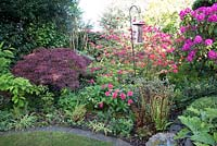 Front border in Spring at Brooke Cottage with shrubs trees and perennials including Rhododendrons, Azaleas, Acer palmatum and ferns
