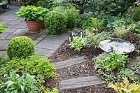 Wood sleeper and bark chipping path leading to patio with beds planted with a variety of ferns, Pulmonaria, Tiarella, Brunnera, Hosta and Buxus spheres