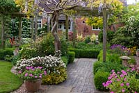 Cottage garden with Wisteria clad pergola over a brick path and Buxus edged borders