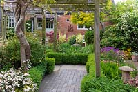 A small cottage garden with Wisteria clad pergola over a brick path. Box edged borders, May.