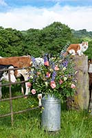Pet cat on a wall behind a milk churn filled flowers -  Quirky Flowers.