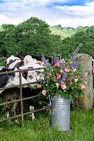 A milk churn filled with flowers grown at Pam Moseley's flower farm, Quirky Flowers