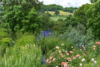 View over oriental poppies and delphiniums in cutting beds, to Staffordshire hills beyond. June.