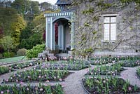 The Parterre at Hotel Endsleigh with trellis work veranda on the corner of the building and beds of pink tulips underplanted with violas in spring