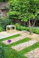 Paving set into lawn with small seating area beneath an Amelanchier lamarckii tree.