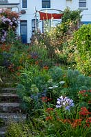 Summery seaside garden, with steep railway sleeper steps and late summer perennial planting.
