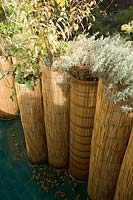 Planters surrounded with bamboo roll