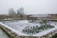 Dusting of snow in the walled kitchen garden, with Leeks in foreground.