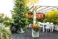 Decked terrace with pergola and planted troughs screening dining area, plants include: Stipa tenuissima, Parrota persica 'Vanessa' and Phyllostachys nigra 'Epimedium'