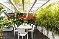 A dining area on a decked terrace, enclosed by a pergola and troughs of foliage plants such as Phyllostachys nigra 'Epimedium'