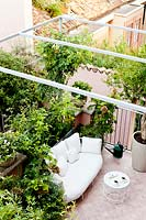 Small tiled terrace viewed from the house, metal pergola over seating area with container plants