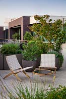 Roof garden with paved seating area with containers of trees and shrubs