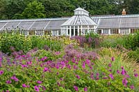 The Perennial Meadow and Victorian Conservatory at Scampston Hall Walled Garden, North Yorkshire, UK.