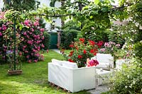 The living area surrounded by a mixture of roses in bloom.