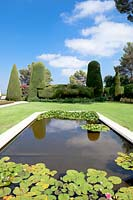 Formal pond with Nymphaea - Waterlily - leaves, topiary and sky reflected in water