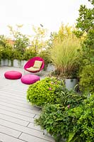 Relaxing corner with bright pink chair and cushions screened by mixed container grown shrubs