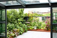 View from conservatory to terrace with planted corten containers