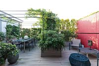 Overview of decked roof garden with dining area under pergola and red partition, plant screens at boundary and planter with bold foliage